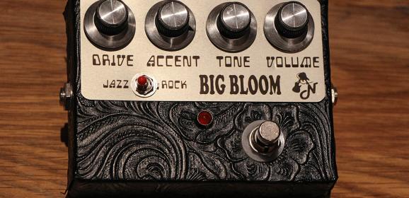 Amplified Nation – Big Bloom